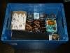Das war die Summe aller bisher eingegangenen Spenden - eine wirklich volle Kiste!