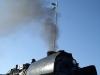 Greenpeace sind allerdings nicht die größten Freunde der Dampfloks.