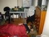 Echten Kartenspielern reichen durchaus auch einfache Schlafplätze!