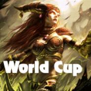 Vorbereitung auf den World Cup 2011